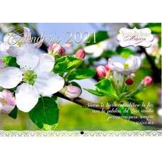 Calendario 2021 Mujeres de pared