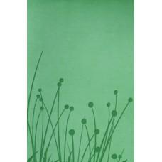 RVR 1960 Biblia Tamaño Personal pradera verde símil piel